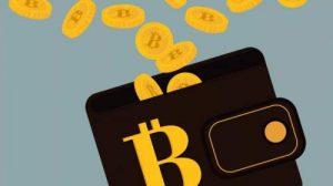 数字货币的钱包,为什么要分冷钱包和热钱包?
